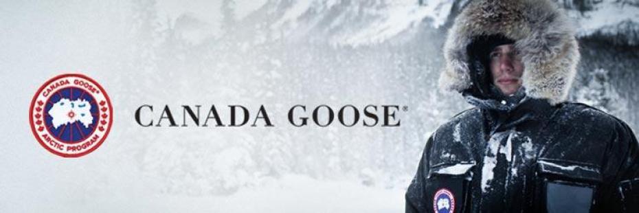 canada goose brand information