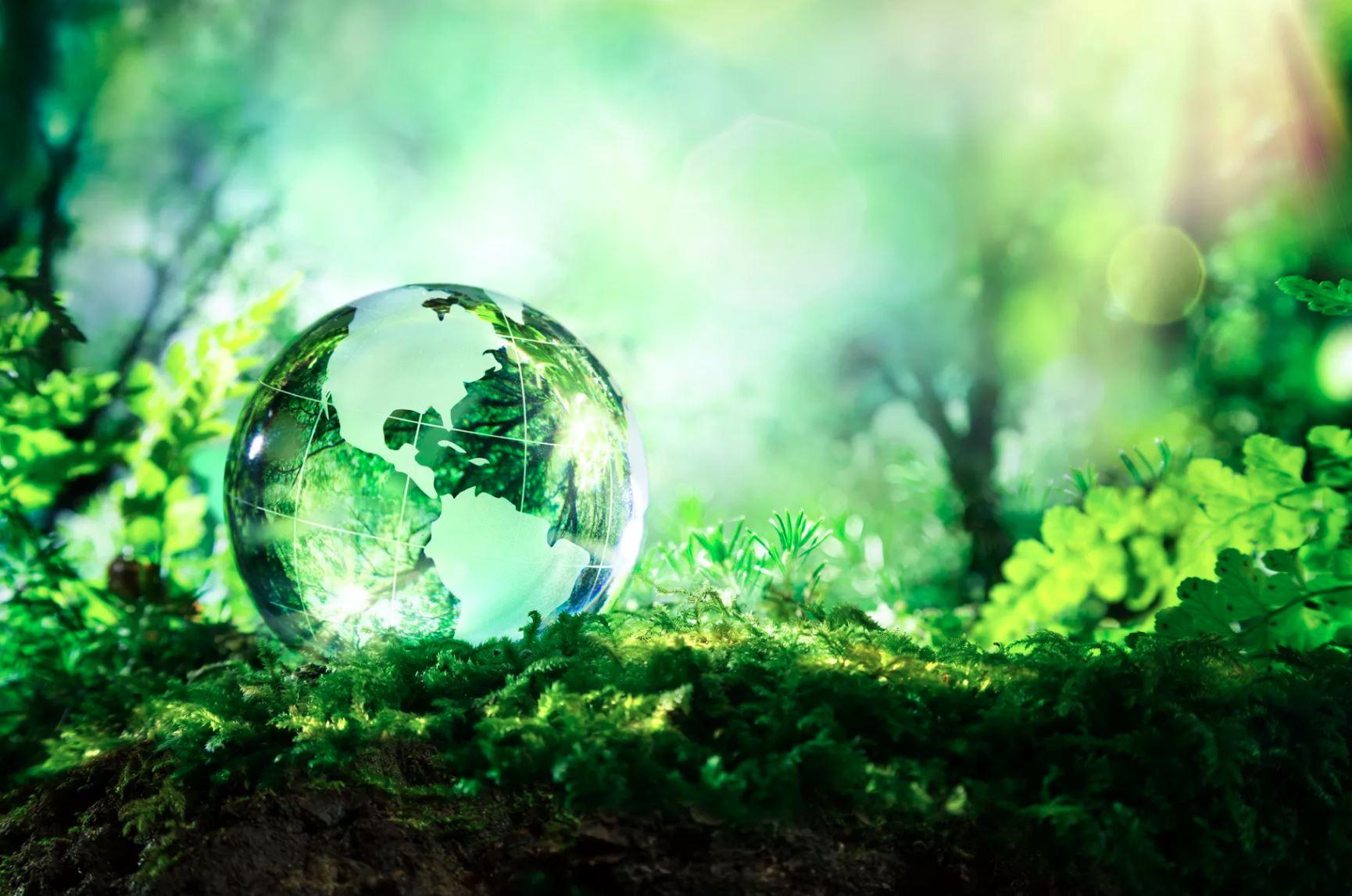 sustainability_shutterstock